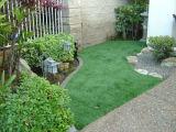 عشب اصطناعيّة لأنّ حديقة مع [لوو بريس]