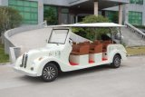 Preis 8 Seater Electric Classic Auto Tourist Auto