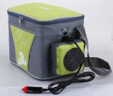 Elektronische MiniKoelkast 4liter DC12V met het Koelen en het Verwarmen voor Auto, het OpenluchtGebruik van de Activiteit