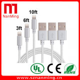 Lightning USB Nylon Braid Charger Cable pour iPhone et USB Data Cable-Silver Color