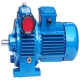 Reductor de velocidad industrial del motor eléctrico Fromtom9#