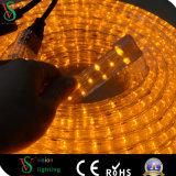 Transparentes 2wires anschließbares LED Seil-Licht für Feiertags-Dekoration