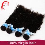 Do cabelo natural da onda de Feibin extensão brasileira do cabelo humano
