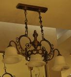 Alta qualidade moderna luz residencial personalizada com Ce, UL, GS