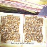 Micro ciottolo di pietra Polished giallo delle mattonelle del sentiero per pedoni