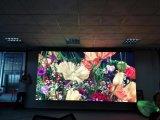 使用料のための高リゾリューションP4.81屋内LED表示