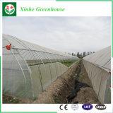 Muti Überspannungs-Landwirtschafts-Plastikfilm-Gewächshaus-Lieferant für Gemüseblumen-Tomate