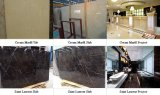 Marfil кремового и бежевого мрамора плиты, Сан Лорен мраморные плиты