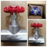 Acier inoxydable Thread Globe Valve 200psi