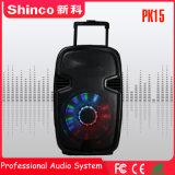 Shinco верхней части продажи 15 дюймов популярных караоке Muitimedia Bluetooth аудио громкоговорителя