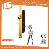 고품질 문에 박은 자물쇠 바디 (533.20-1T3, 513.20)