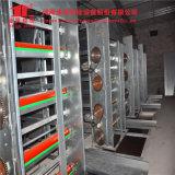 Équipements de fermes de volaille poulet châssis en H de la couche de la cage de poulet