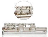 16 tasti hanno chiuso la scanalatura placcata argento dell'allievo (FL-306SE)