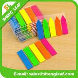 Cadeaux promotionnels Note personnalisée personnalisée régulière colorée (SLF-PI003)