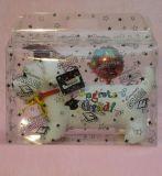 Caja de embalaje plegable del cumpleaños del regalo de encargo de la fiesta de Navidad (rectángulo plástico)