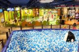 Kleurrijke Overzeese van de Bal van de Bal van de Pret Zachte Plastic OceaanBal voor Pretparken