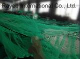 녹색 Knotless 낚시 도구 HDPE 물고기 감금소 그물