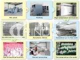 Wachsendes Haus des weißen Pilzes mit Kühlsystem