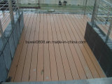 Coextrusion WPC Decking for Outdoor Swimming Pool and Others