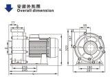 Swimmingpool-Pumpe (WTB) mit dem CER genehmigt