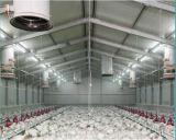 Тип дом контроля за состоянием окружающей среды цыпленка с оборудованием