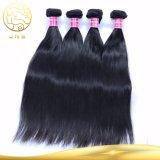8A加工されていない直毛のブラジルのバージンの人間のWeavonの毛のよこ糸