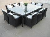 Tabela e cadeiras da mobília do jardim de 10 Seaters
