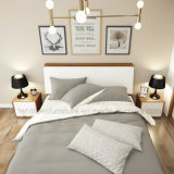 Base cinque stelle dell'hotel casella di legno di stile di Bj03A dell'alta