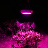 La buona qualità LED coltiva l'indicatore luminoso chiaro della pianta del LED