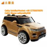 Geländewagen-weiße Farben-Fernsteuerungsauto-Baby-Spielzeug
