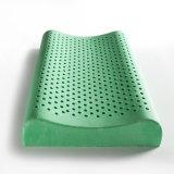 Descanso real verde saudável do contorno do látex de Breathble