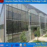 Hersteller-Tunnel-Gewächshaus-ausgeglichenes Glas täfelt grünes Haus