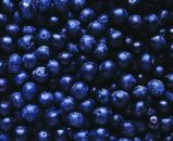 Extrato europeu Anthocyanin>25% natural CAS84082-34-8 da uva-do-monte