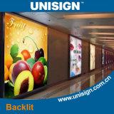 Bandiera Backlit alta qualità di Unisign