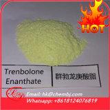 뚱뚱한 가열기를 위한 Tren E 포물선 Trenbolone Enanthate 스테로이드