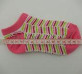 Preiswertes Preis-Qualitäts-Baby keine Erscheinen-Knöchel-Socken