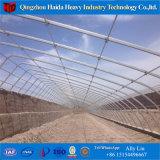 La película de plástico de túnel de bajo coste para los Tomates de invernadero agrícola