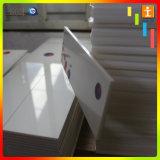 Impression UV de prix usine sur l'acrylique (TJ-UV001)