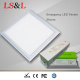 IP33/IP40/IP65 impermeabilizzano l'indicatore luminoso di comitato Emergency del LED con il driver dell'UL