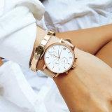 革バンドのスチール・ケースの簡単なダイヤルの男女兼用の腕時計