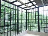 일광실 Single-Layer 명확한 유리제 까만 격자 강철 Windows