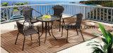 屋外の/Rattan/セットされる庭/テラス/ホテルの家具の藤のChair&表(HS 1027C& HS6060ET)