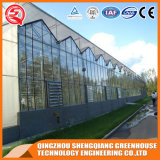 Gradenのための中国のパソコンシートの温室の低価格の農業の温室