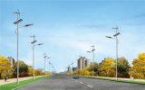 Gutes Solarstraßenlaterneder Leistungs-20~100W u. im Freien Solar-LED-Straßenlaterne