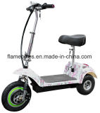 女性のための3車輪との電気Trike