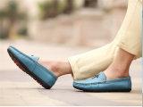 人の革靴の偶然靴(FTS1020-11)の熱い販売