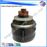 (BPGGPP2) Fita do silicone Rubber/Cu Wire/Cu protegida/cabo da alta temperatura/energia convertível/eléctrica da freqüência