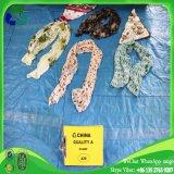 Schönheits-bunter verwendeter Schal für Großverkauf für Afrika