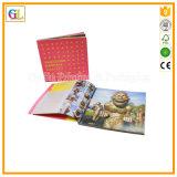 Impresión profesional del folleto del asunto (OEM-GL039)