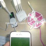 Controllo Pre-Shipment/di controllo di qualità/servizio di controllo per il USB LED